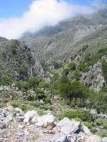 Kallikratis - cesta přírodou